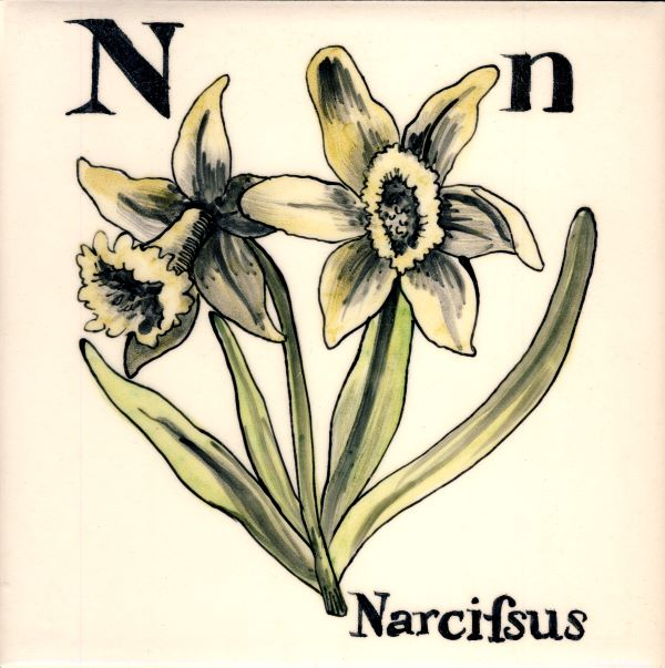 Alphabet-tile-N-Narcissus