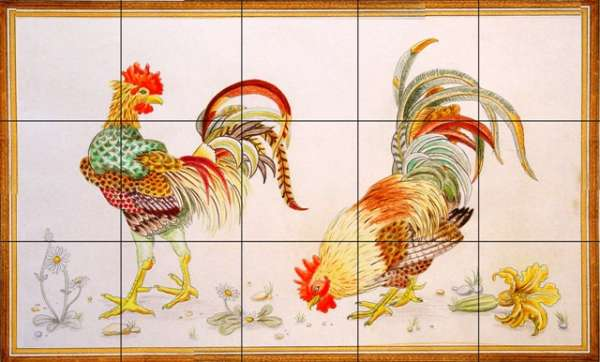 Chickens, hens, roosters and cockerels 12