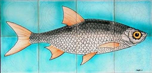 Fish panel 4