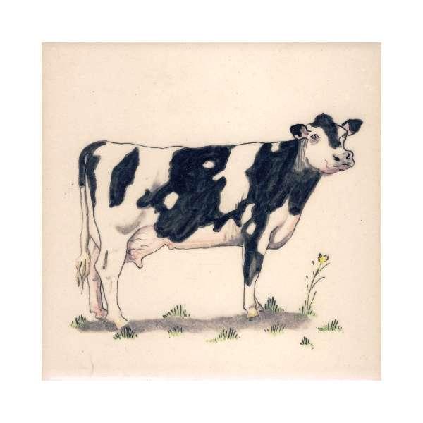 Farm Animals 6