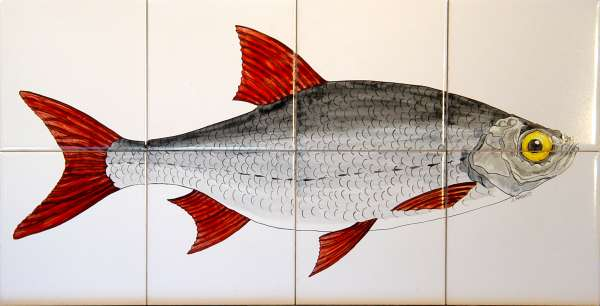 Ide Fish on hand painted tiles