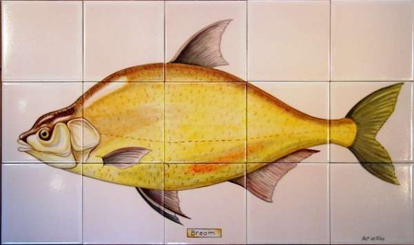 Large Bream Panel