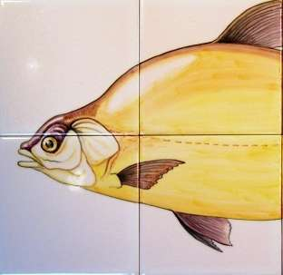 Small Bream Panel