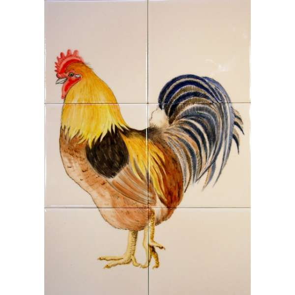 Chickens, hens, roosters & cockerels 14