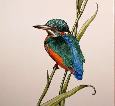 Kingfisher on hand painted tiles