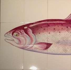 Trophy Fish - Salmon